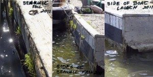 Seawall Deterioration Fall 2011001